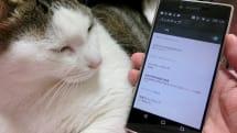 写真や動画のたまりすぎを解消、Androidスマホのストレージお掃除テクニック