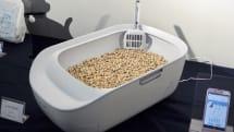 ネコの「尿」を測るトイレ、シャープが7月発売。ペット事業参入第一弾