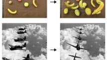 写真や絵画を立体物として編集する3Dレタッチ技術、CMU研究者が発表 (動画)