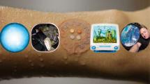 Macが植物アートに・宇宙で一番まるい星みつかる・水を飲め!と教える絆創膏(画像ピックアップ59)