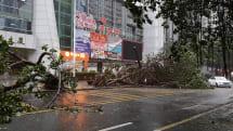 深センで超大型台風に遭遇、一気に変わる天気に驚き。現地の警告シグナルはこう見よう