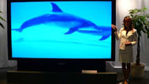 """JVC busts out """"world's largest"""" RPTV at 110-inches"""
