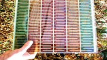 Pink solar cells provide green power on the cheap