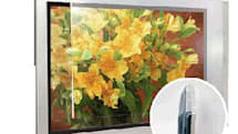 ProShield eliminates glare and protects flat-screens