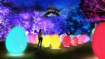 「チームラボ 広島城 光の祭」2019年2月8日から開催、前売り券は12月15日販売