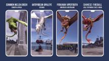 ハリポタ魔法同盟で一週間の大ボーナス開始。9月7日は「ドラゴンの日」イベント