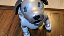 Aibo update lets you program your robot puppy's actions