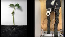 Plant-inspired robot can squeeze into tight spaces while carrying heavy tools