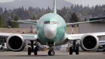 Bird strike may have triggered software issue in second 737 Max crash