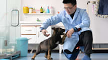 China says it cloned a police dog to speed up training