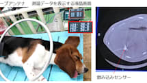 「飲む体温計」の動物実験に成功。胃酸で発電し、深部体温を計測