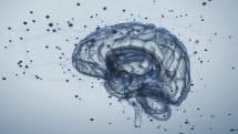 電気ショックで脳が若返る?ボストン大学高齢者のワーキングメモリが20代に回復と発表