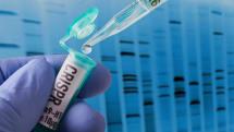 CRISPR遺伝子操作受けた中国の赤ちゃん、寿命が平均より短い可能性。CCR5変異は感染に敏感との調査結果