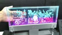 JDI、次世代ディスプレイ「Micro LED」「透明液晶」で再起 一部20年量産
