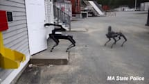 米マサチューセッツ州警察、ロボット警察犬を試用中。Boston DynamicsのSpot使用、移動式監視カメラとして