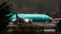 737MAX工場に住み着くハヤブサへ立ち退き要請。生産停止で外へ出られず衰弱の恐れ
