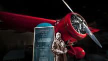 スミソニアン博物館、所蔵品280万点を2D-3Dモデルでオンライン公開。自由に再利用可能