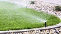 Smart sprinklers only water your lawn when it's thirsty
