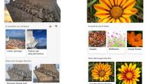 Bing 也可通过手机相机来进行图像辨识搜索