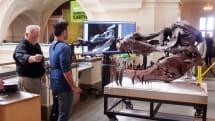 Kinect 用來掃瞄恐龍骨頭好像还不錯用呢!