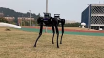 This robot dog learned how to get up after being knocked down