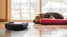 Neato's robotic vacuums will soon work with Siri Shortcuts
