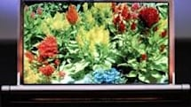 DuPont, Dainippon buddy up to develop OLED displays
