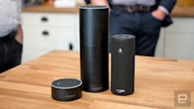 Amazon Echo and Google Home want to be your new house phone