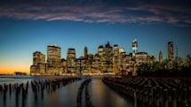 NYC's domain on record pace with over 56,000 accounts so far