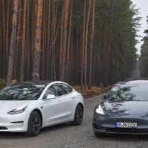Tesla ordered to halt early work on its German Gigafactory