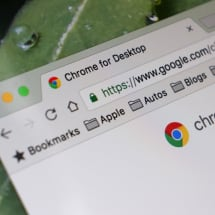 Google Chrome will warn you if your logins have been stolen