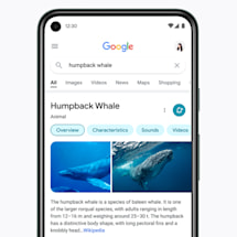 Google mobile search redesign focuses on results, not frills | Engadget
