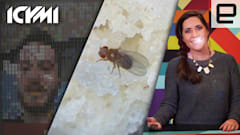 ICYMI: Reading a fly's mind, real Minecraft phone and more