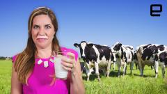 ICYMI: The USDA created milk-based cling wrap