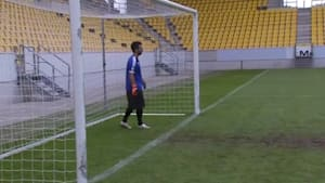 German Company Show Goal-Line Technology for World Cup