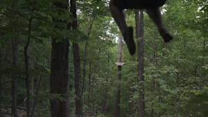 Get High In Ottawa… With Ziplining
