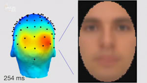 Scientists Recreate Images of People's Memories
