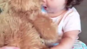 Sweet little girl affectionately hugs teddy bear