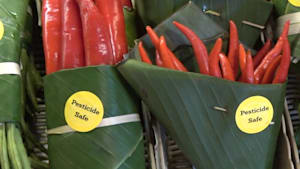 Thailand ditches plastic wraps for banana leaves