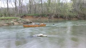 Heroic dog rescues two dogs trapped in kayak