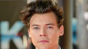 Harry Styles: Wird er zum Prinzen?