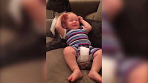 Baby and Great Dane are best friends