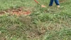 Man hits self in the face with shovel