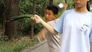 Boy cuts fruit by throwing cards through them