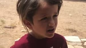Excited little boy introduces his lizard friend