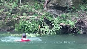 Man tries rope swing and falls into water