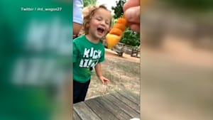 Boy's excitement for cheese fries goes viral