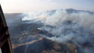 50 Meter hohe Flammen: Waldbrand wütet weiter auf Gran Canaria