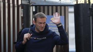 Oppositionspolitiker Nawalny ist wieder frei