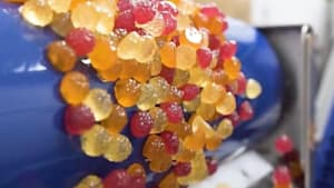 How gummy vitamins are made